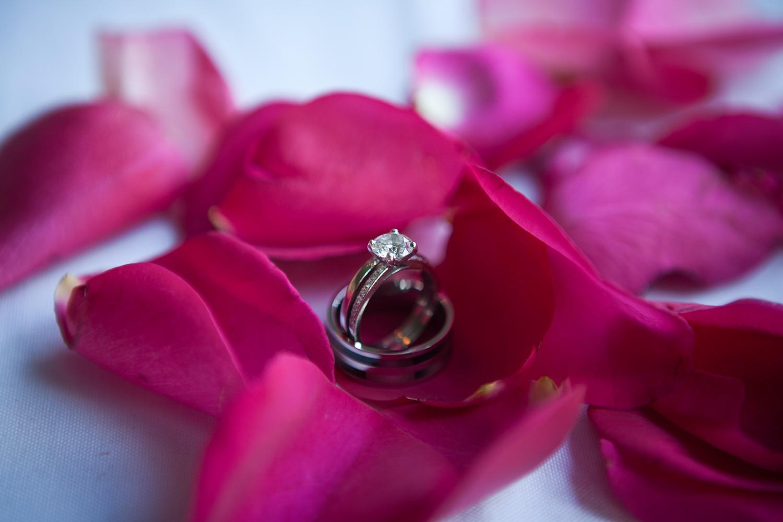 KarmalizedPortfolio_Wedding_KDF1970.jpg