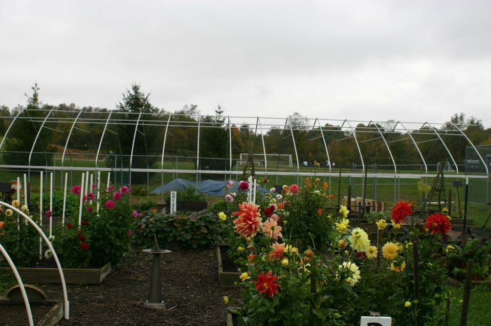 2013 Extending the Season Hoop House - Jim Reding (GHS)