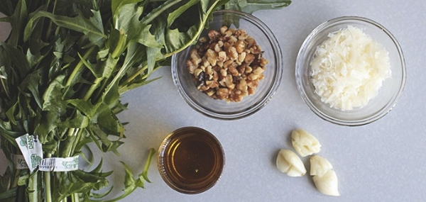 Dandelion Pesto -Photo via Wit and Vinegar