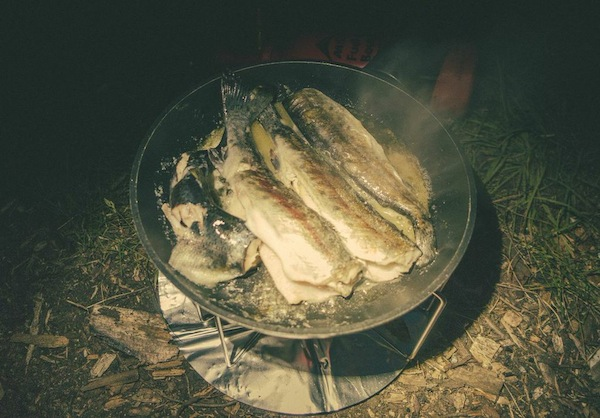 Dinner; Butter-lemon trout, grilled up nicely.