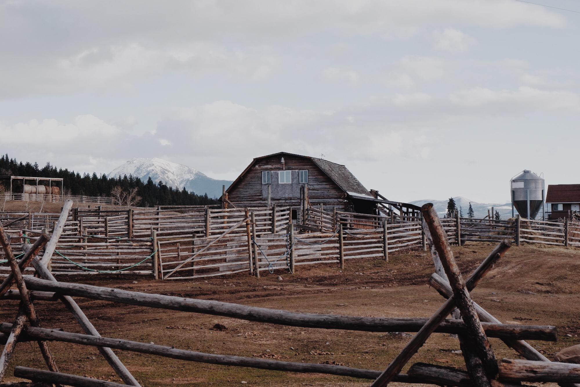 Big Bar Guest Ranch - UP KNORTH 4.jpg