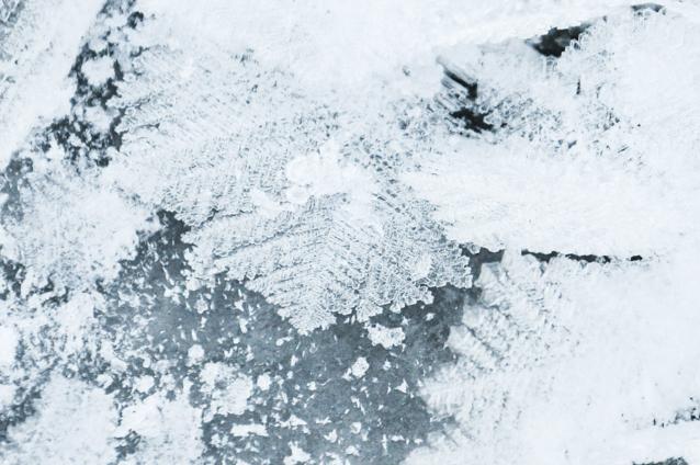 winter639.jpg