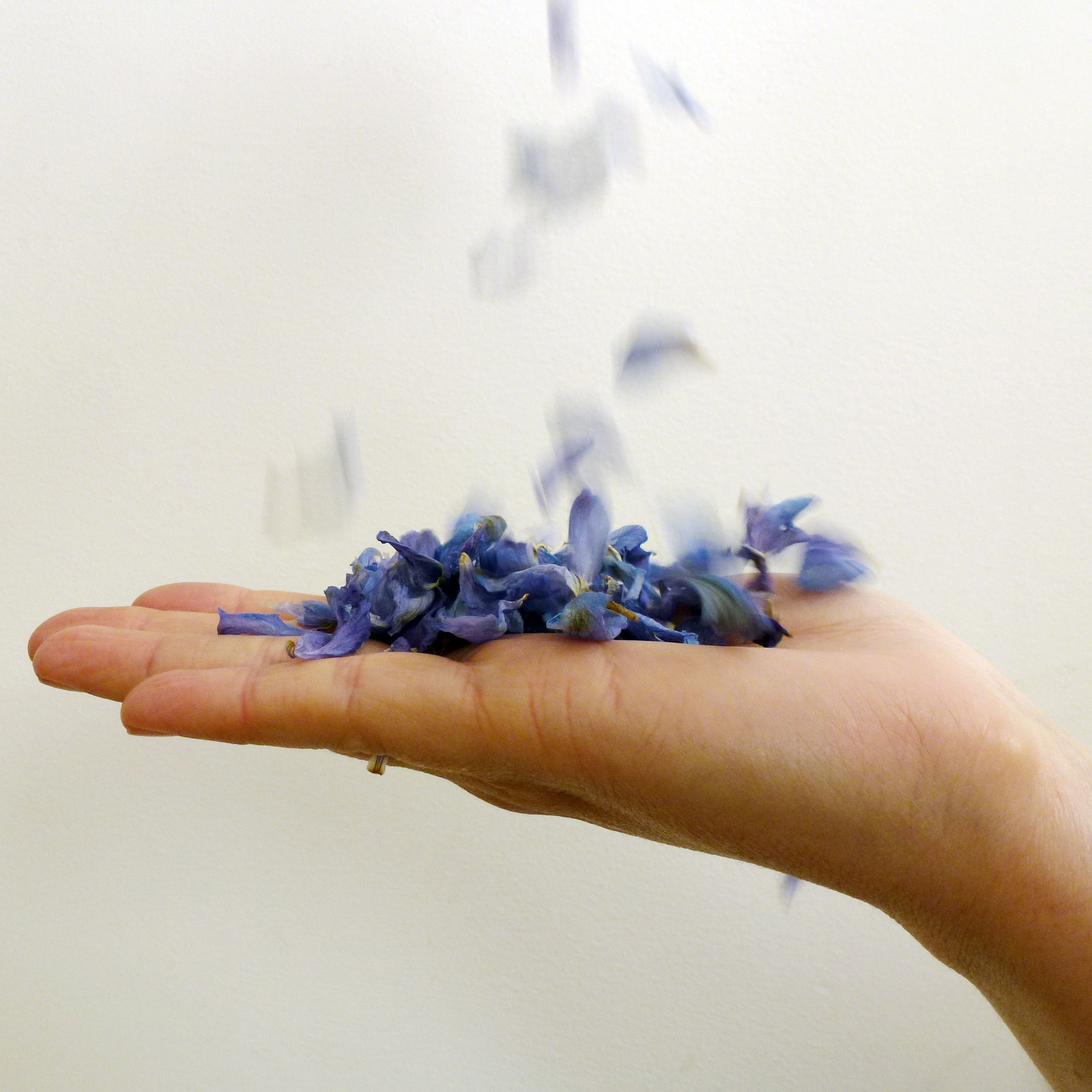 Why not use dried flower petals as confetti?! It's biodegradable and adds that element of rustic.