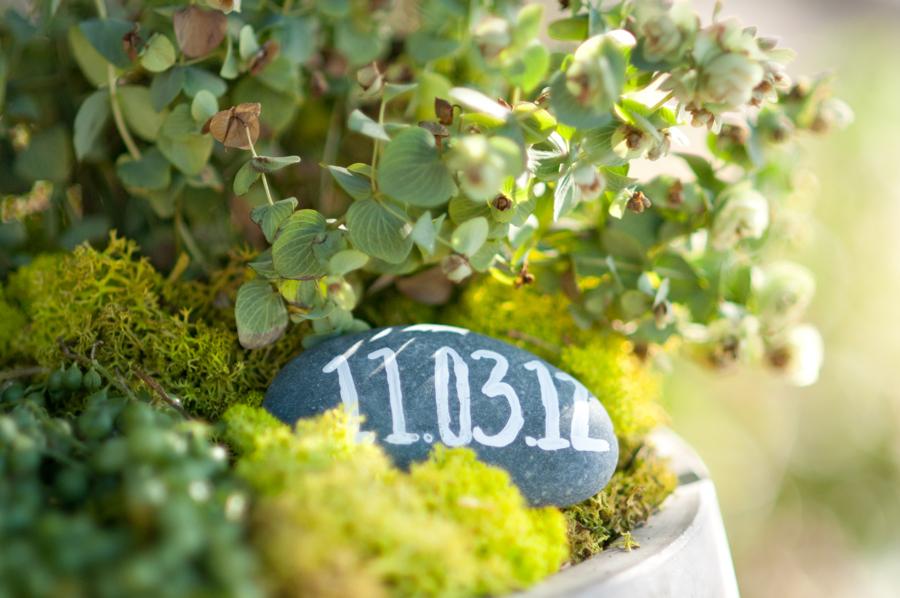 Wedding-Ceremony-Planter-Rock-Date.jpg