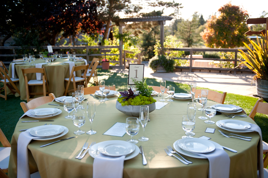 Wedding-Reception-Sova-Gardens.jpg