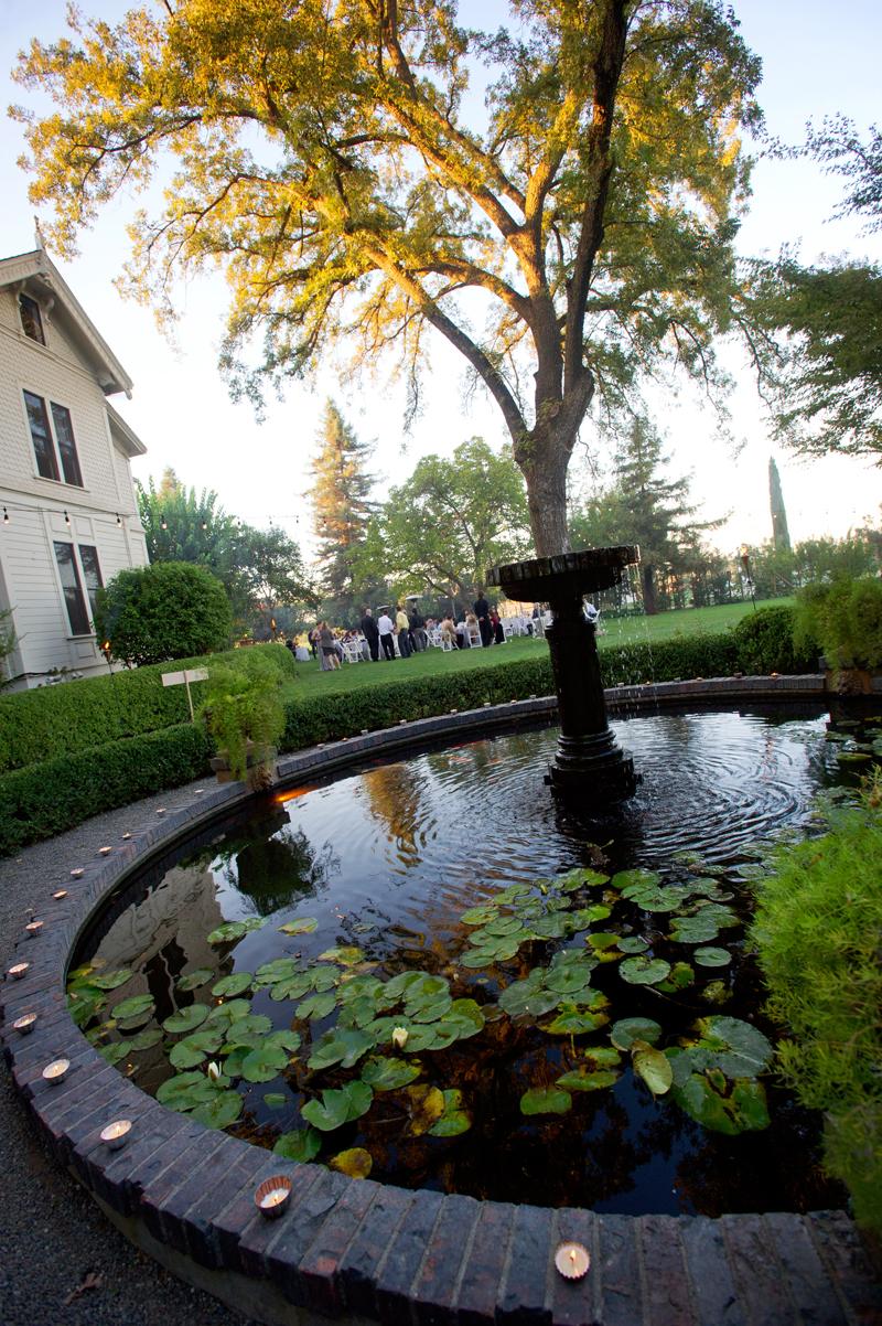 park-winters-koi-pond-wedding.jpg