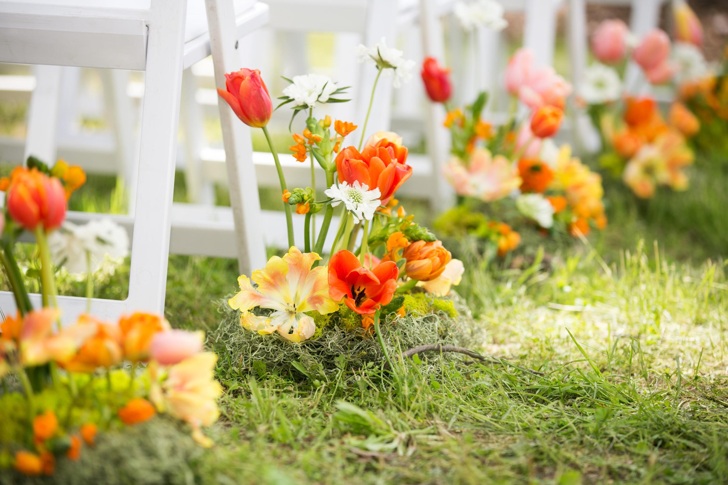campovida-ceremony-tulip-wedding-aisle.jpg