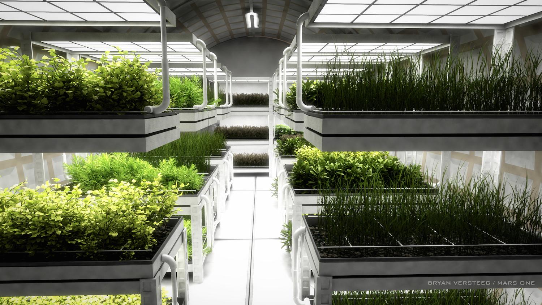 An artist's concept of a Mars habitat's farm. Credit: Bryan Versteed/Mars One