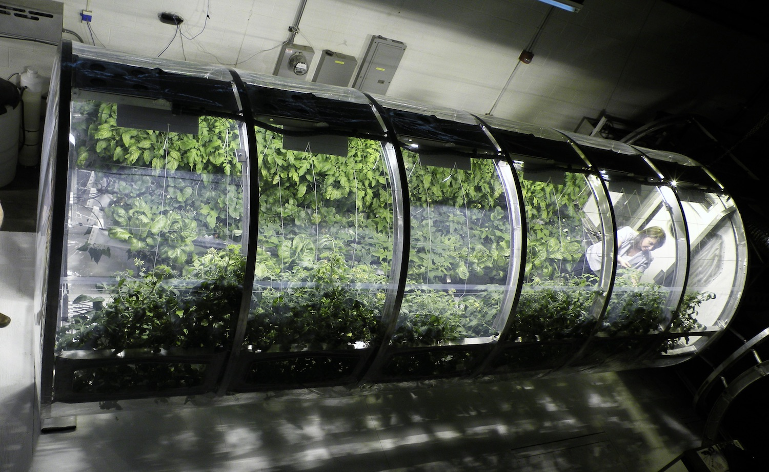 This prototype for a deployable greenhouse could provide fresh food and recycled air for astronauts on the Moon or Mars.  Credit: University of Arizona