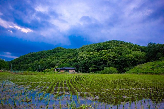 Walking the hidden country roads in dongducheon #동두천시