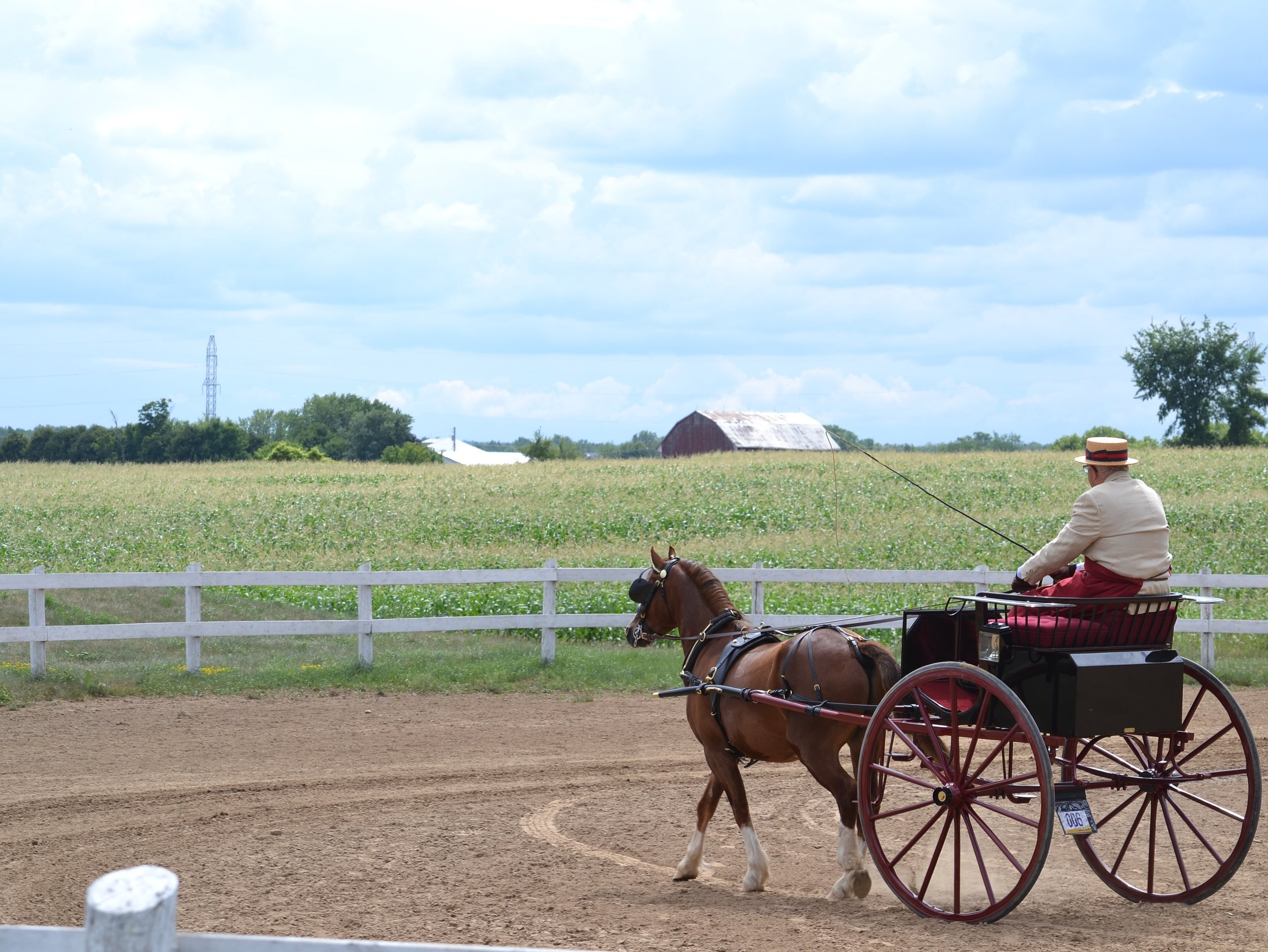 Edenview Equestrian Center  Canadian All Welsh Show 2016 Presented by the Welsh Pony and Cob Association of Ontario