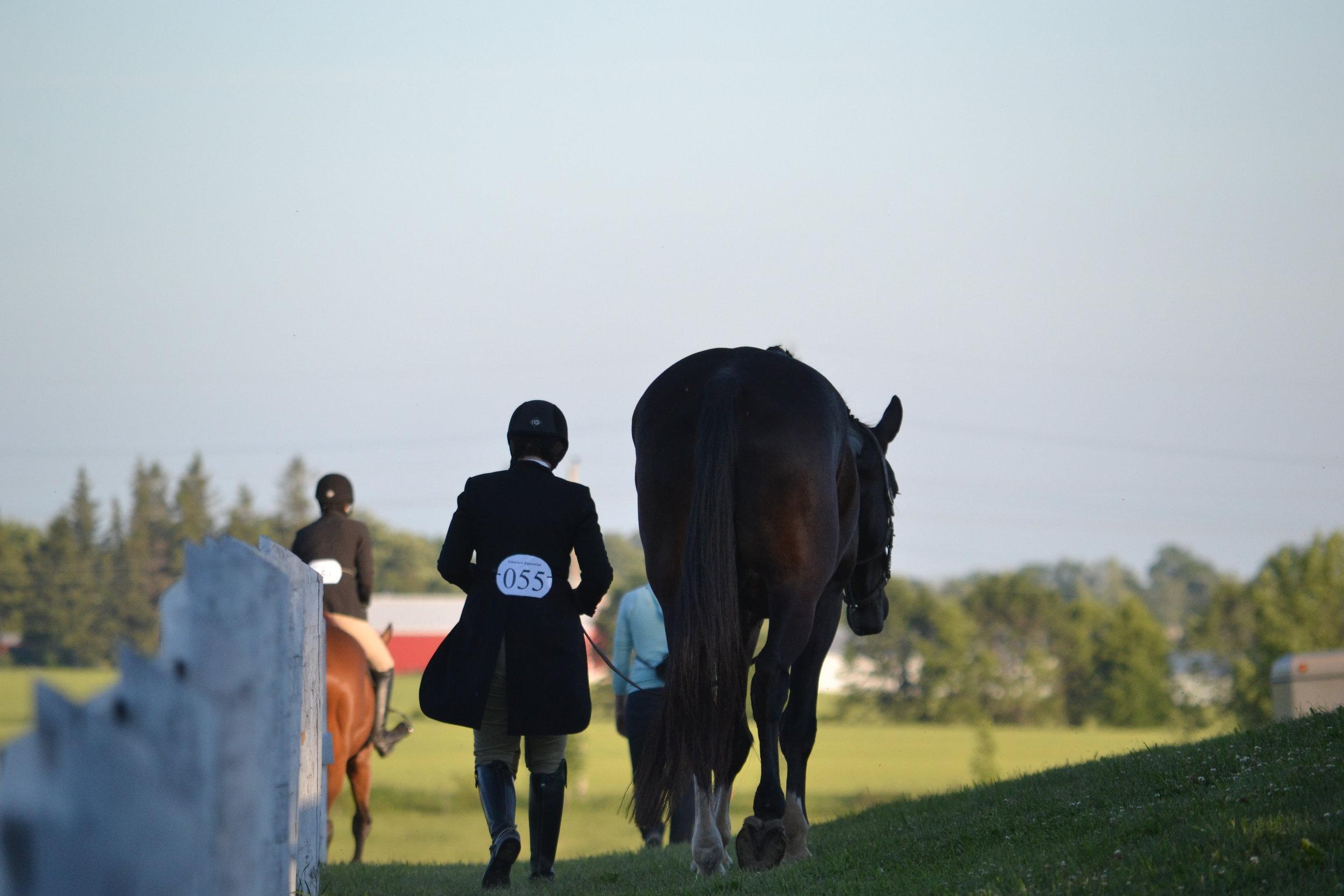 Edenview Equestrian Center Horse Show July 2015