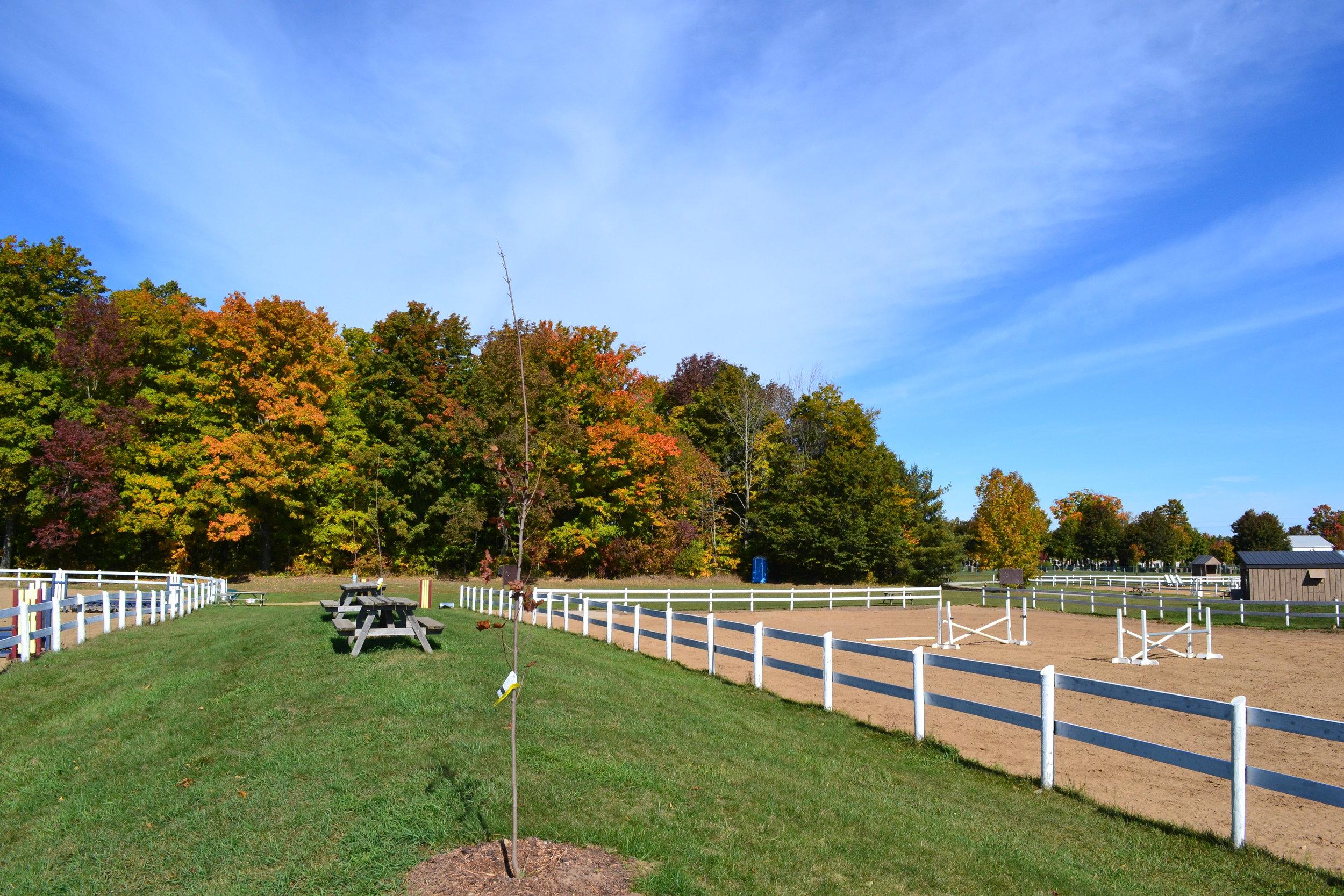 Edenview Equestrian Center Fall 2015
