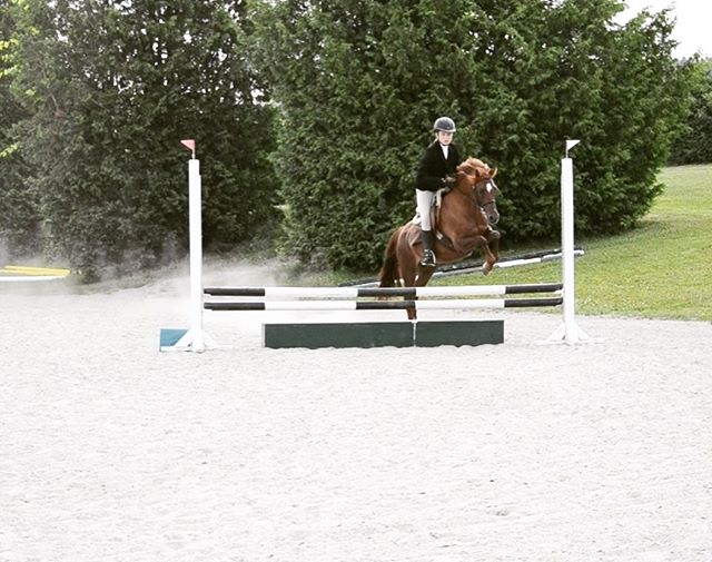 Another fun @trilogyctseries show this weekend! Faith has improved every show and we're proud we finally put all the pieces together and didn't have any holes this show! ✅ Lynne and Teddy also had their best course yet with only one wobbly fence for the green pony ✅ Shanice and Sadie rode a beautiful and incredibly accurate test in a tough division for their third show ✅ As a bonus, everyone came home with ribbons! 🥇  #somuchlearning