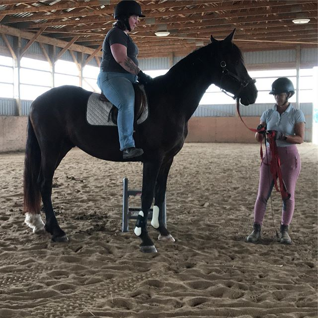 Floyd has been here for a month and had his first ride with us yesterday! Making great progress and is a pleasure to work. He will learn to drive and ride for his owner Michelle and her daughters! Friesian x Hackney #learning #training #progress