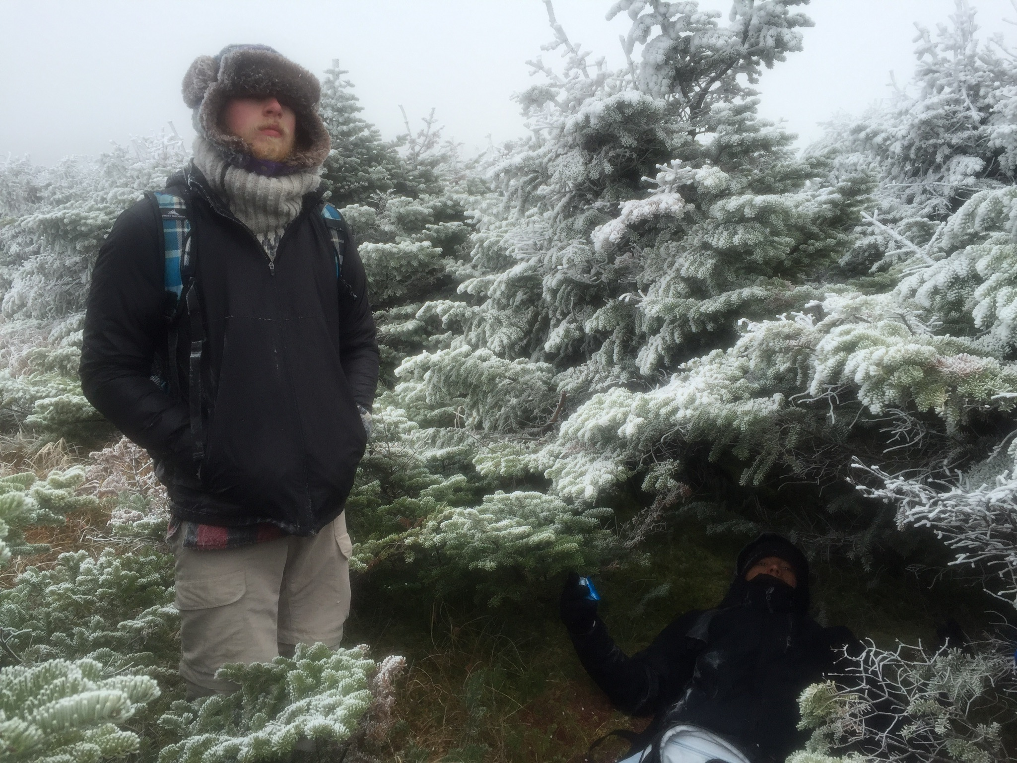 Taking shelter in a tree grove near Hamlin Peak.