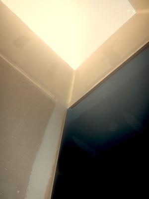 skylight framing1.jpg