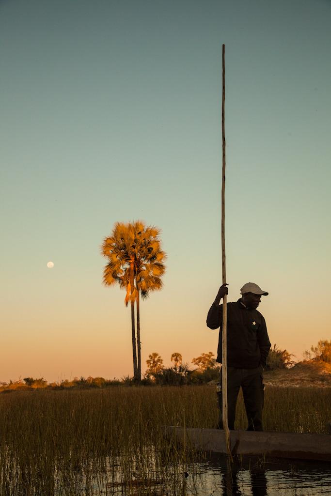 Mokoro Poler, Botswana, Africa