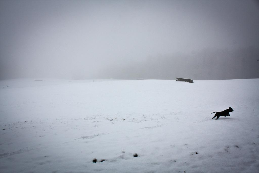 """""""Snowbound"""""""