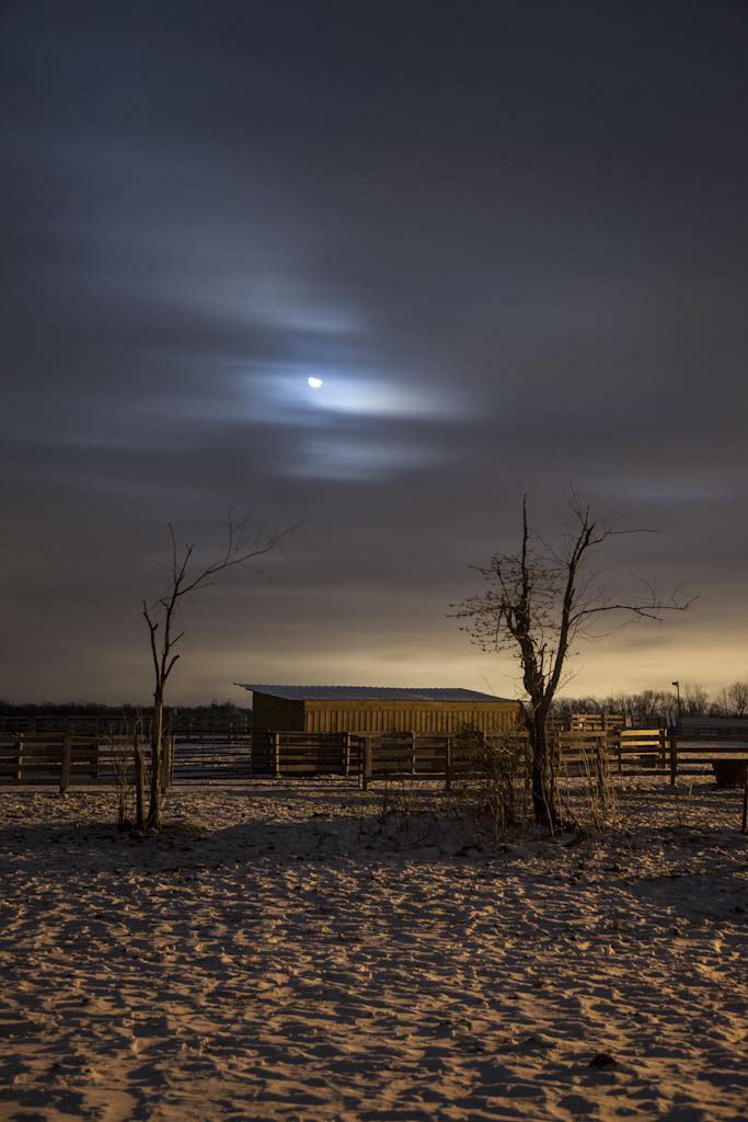 night-36-2.jpg