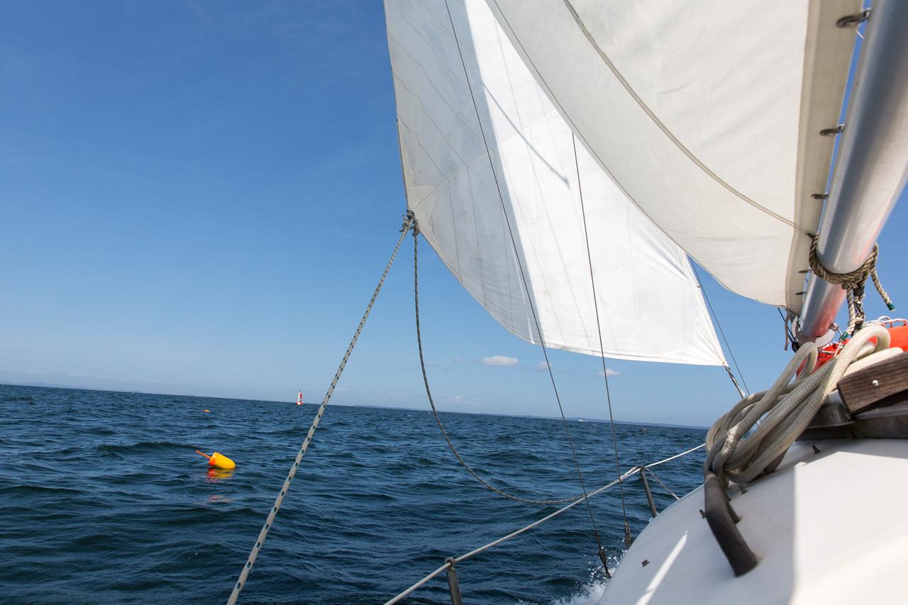 Under Sail #1