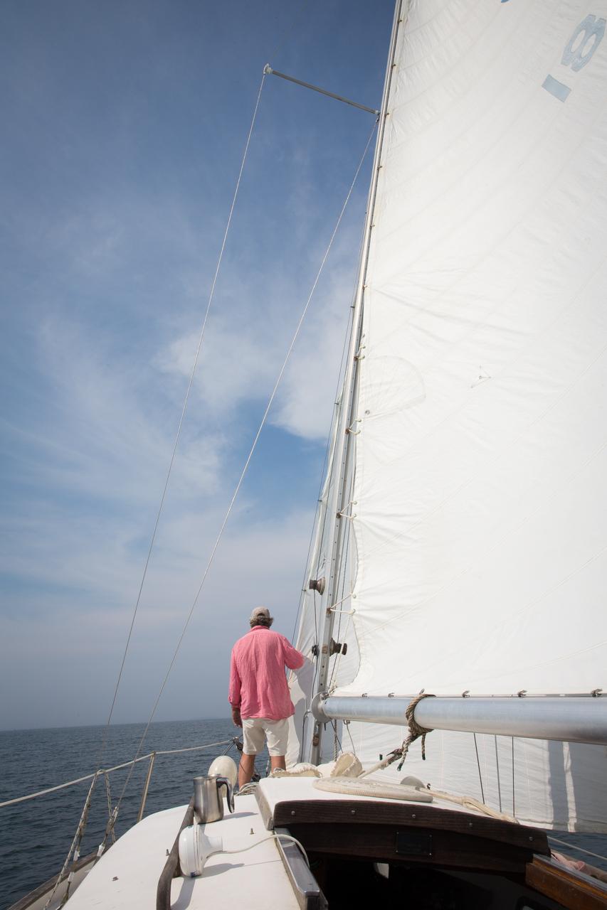 Under Sail #4