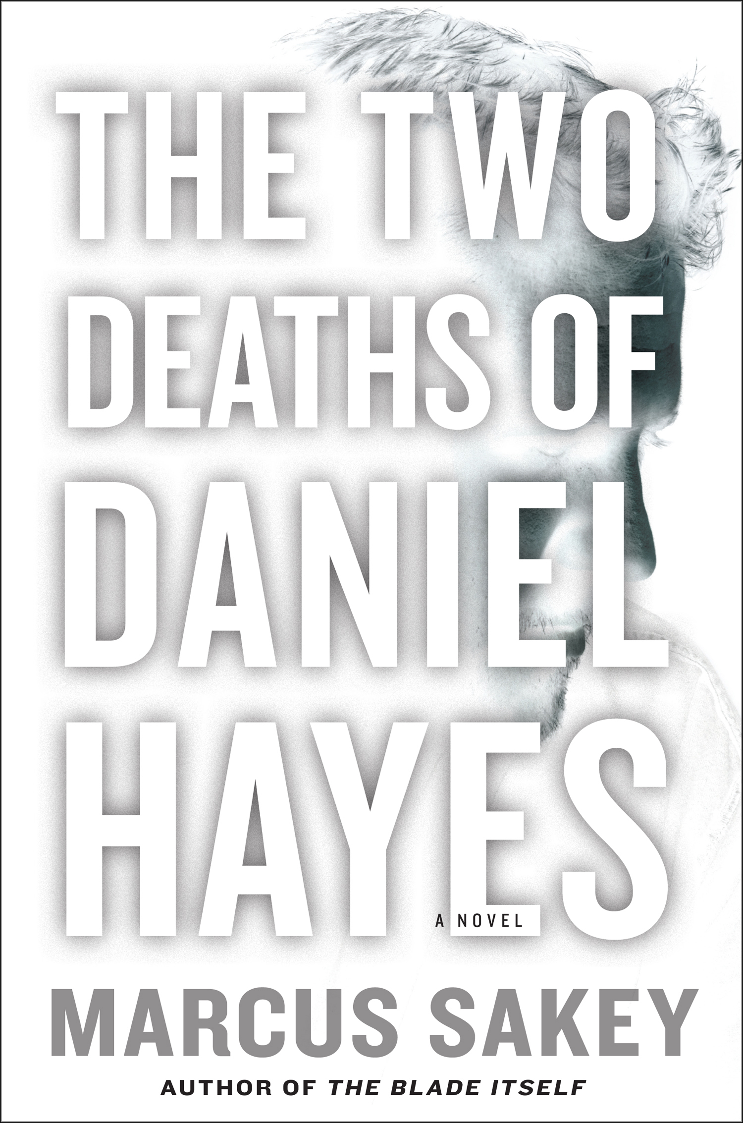 THE-TWO-DEATHS-OF-DANIEL-HAYES-hc-ss6.jpg