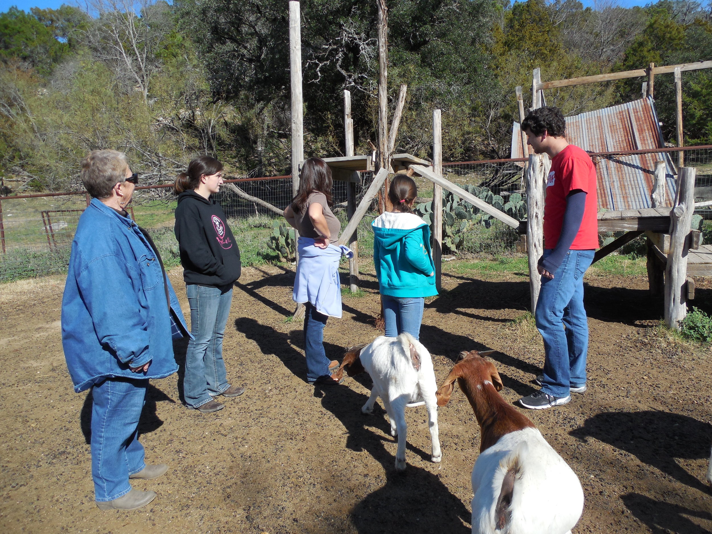 Our guests admired the play area that Jake and Jess are building for the goats.