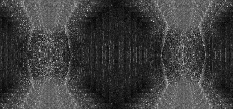 DSC_1737(2)_web.jpg