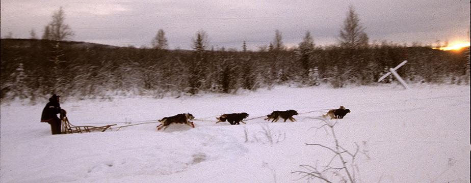 Alaska_3lo.jpg