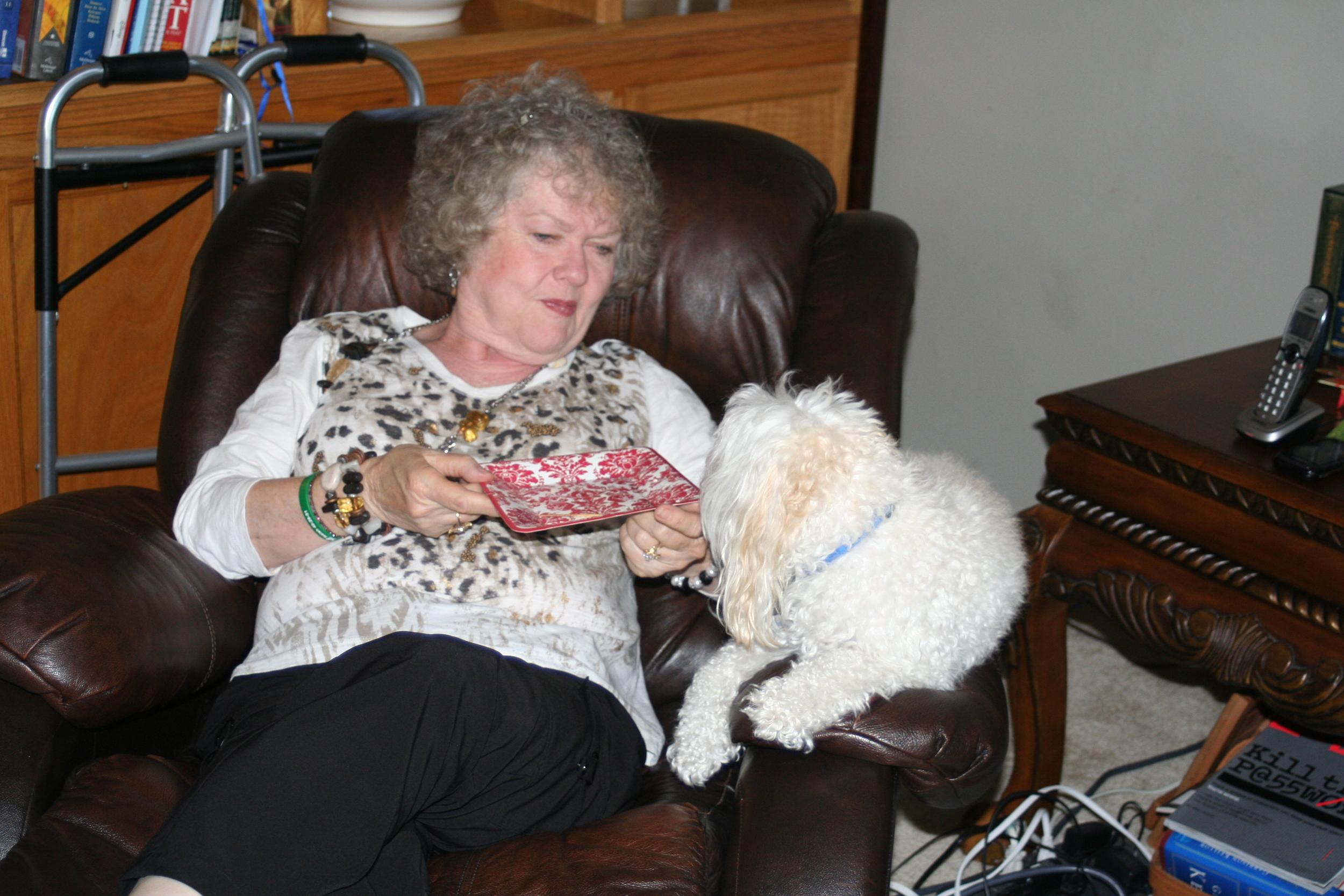 Dodger found Grandma Massongill's plate most interesting!