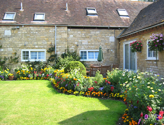 Flowers in the courtyard
