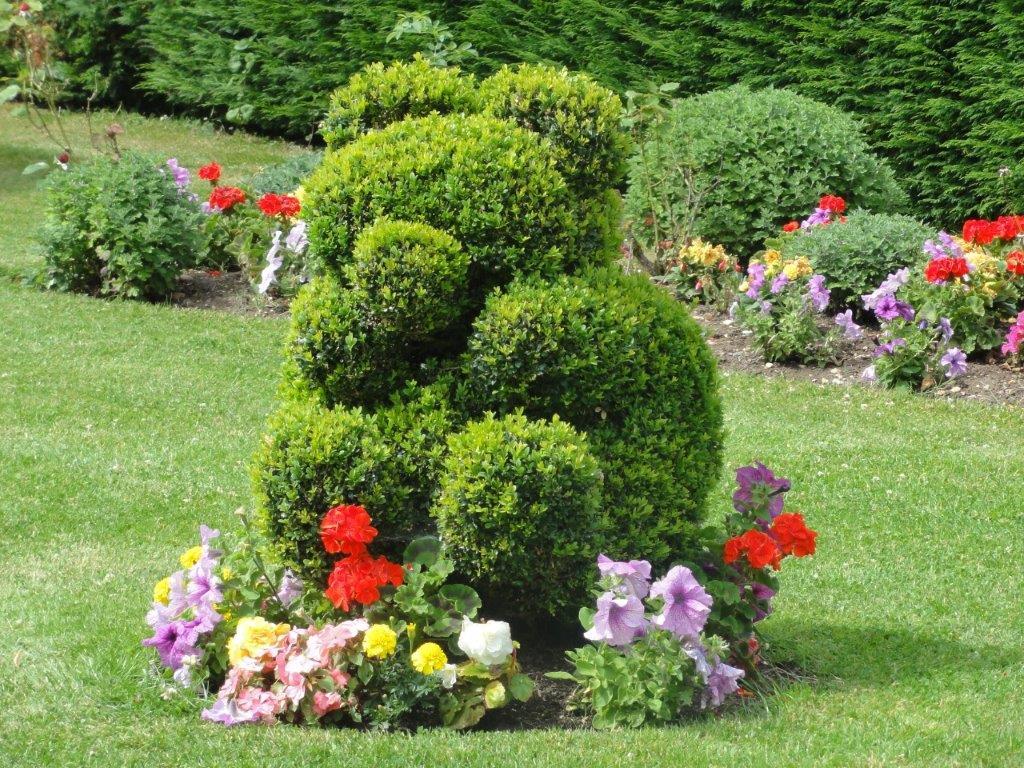 Teddy topiary