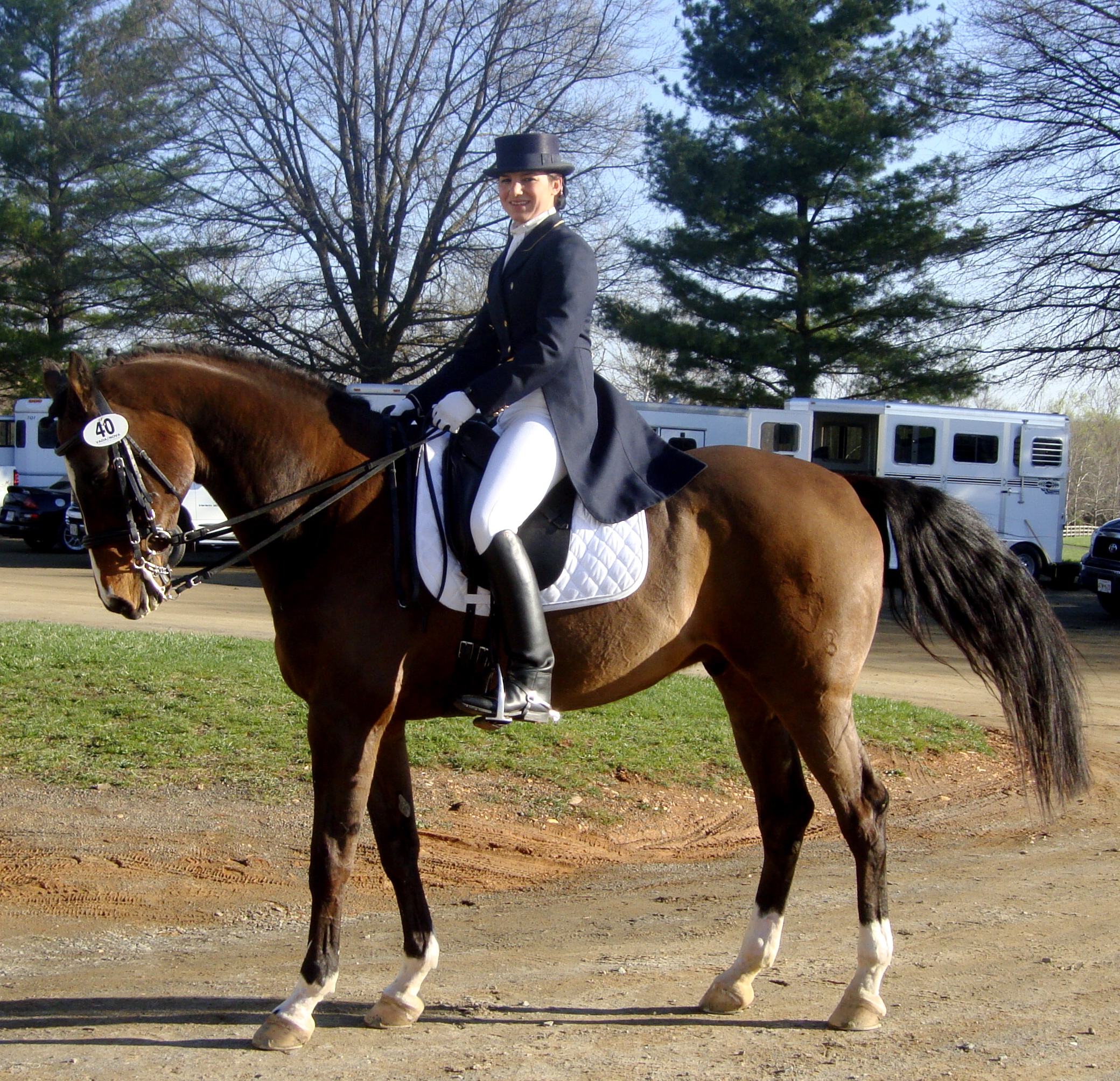1995 Holsteiner Bay Gelding. 16.1 by Loutano x Nadinchen/Fasolt  Shown through Prix St Georges. Earned his owner her Silver Medal. Cooper has an excellent walk, easy to make a fancy trot, loves to passage, expressive changes, very easy to half pass and he's extremely fun to work with. Numerous championships for his Young Rider.