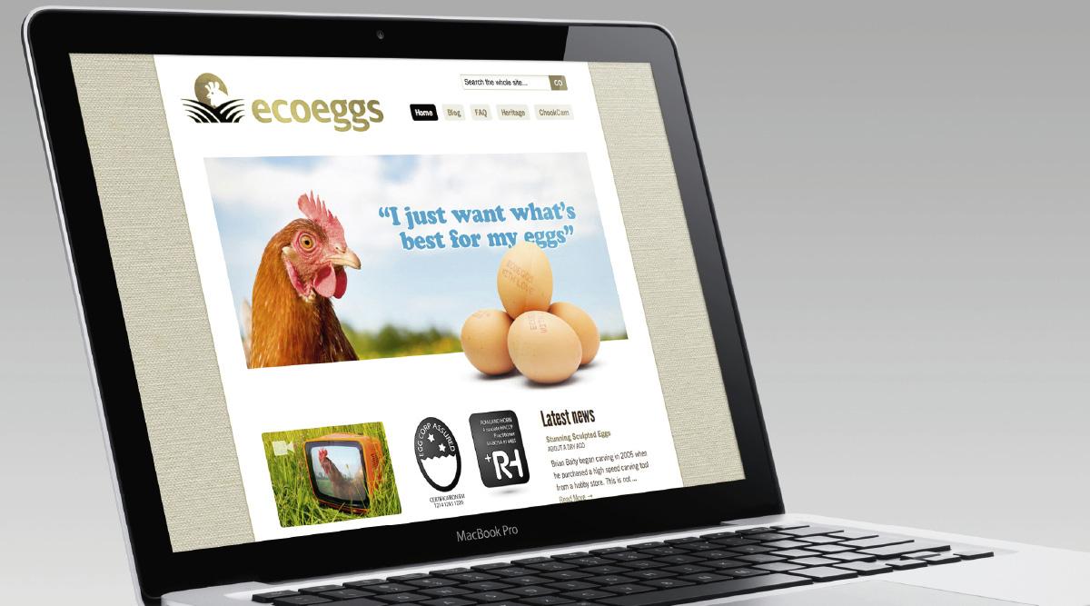 Ecoeggs Website