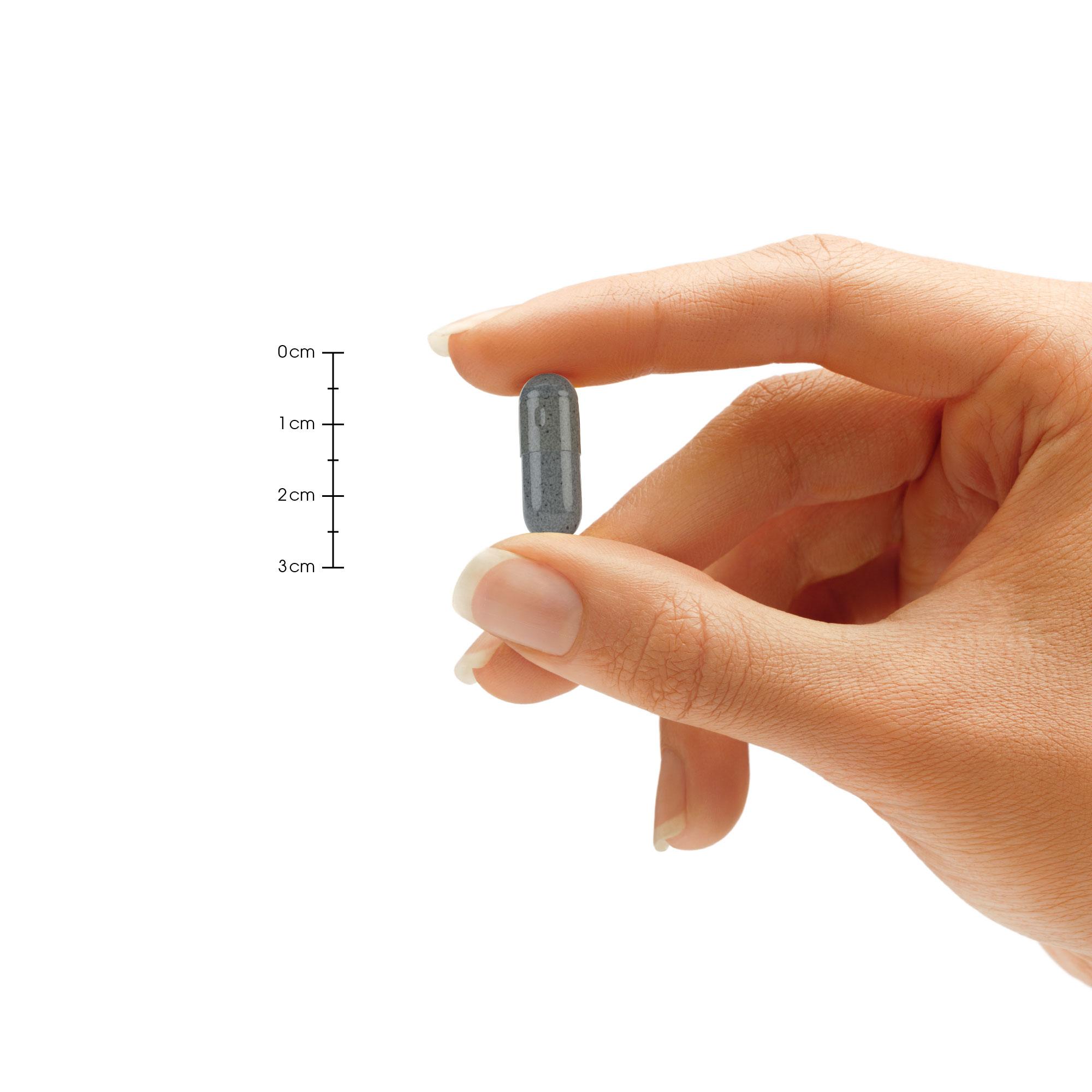 Brain-Booster-30-Pill-2K.jpg