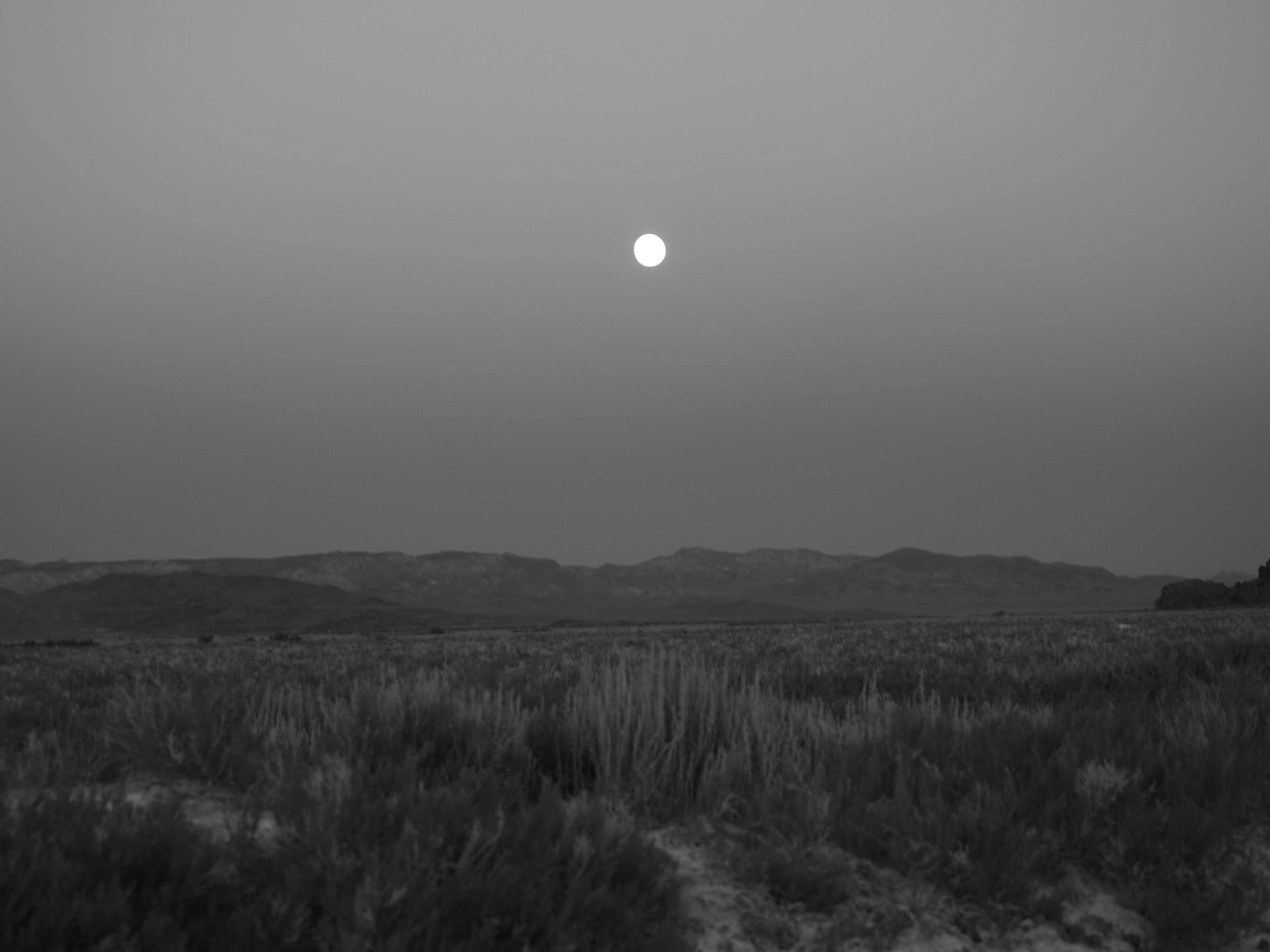 desertmoon2.jpg
