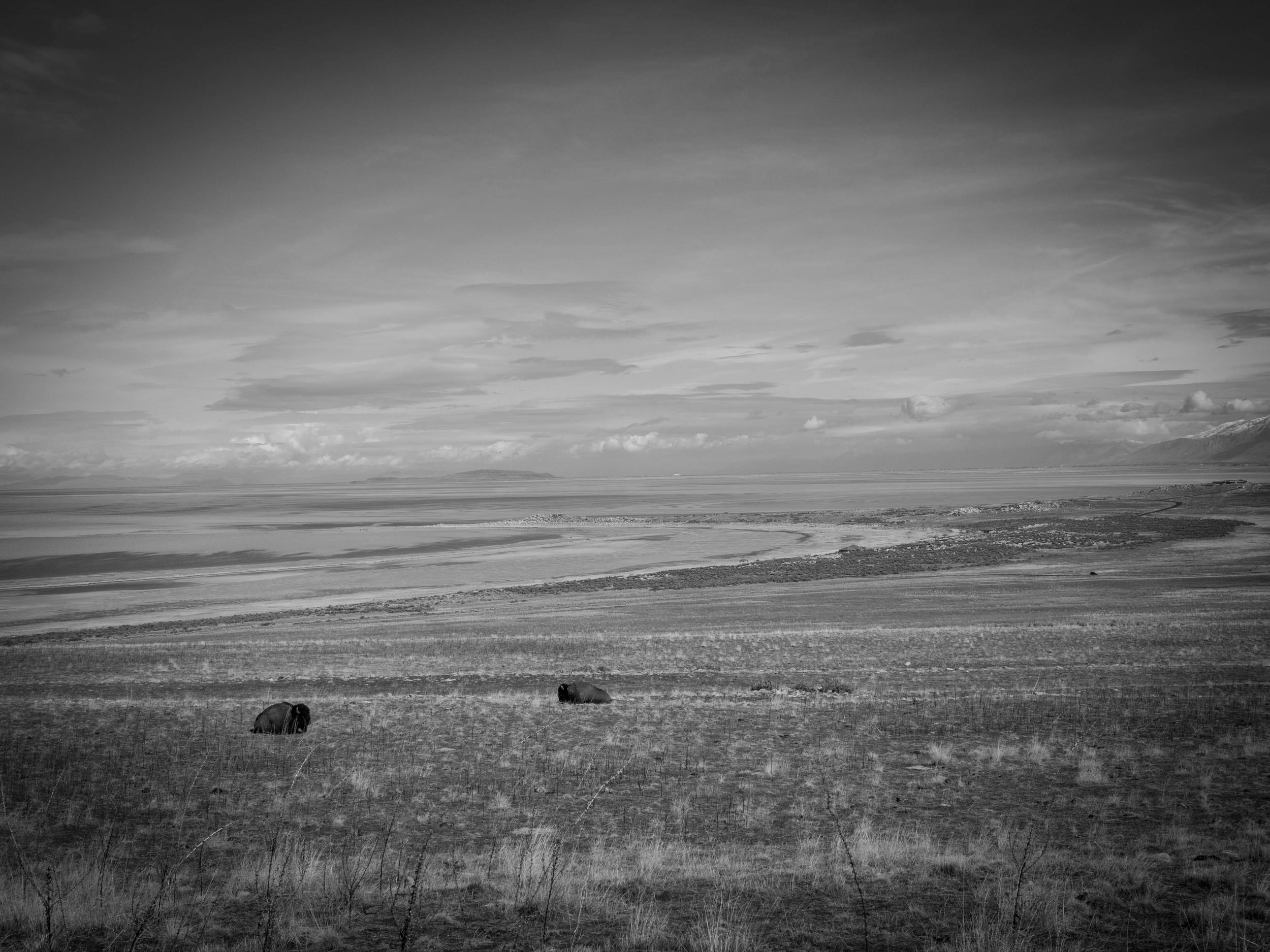AntelopeIsland5.jpg