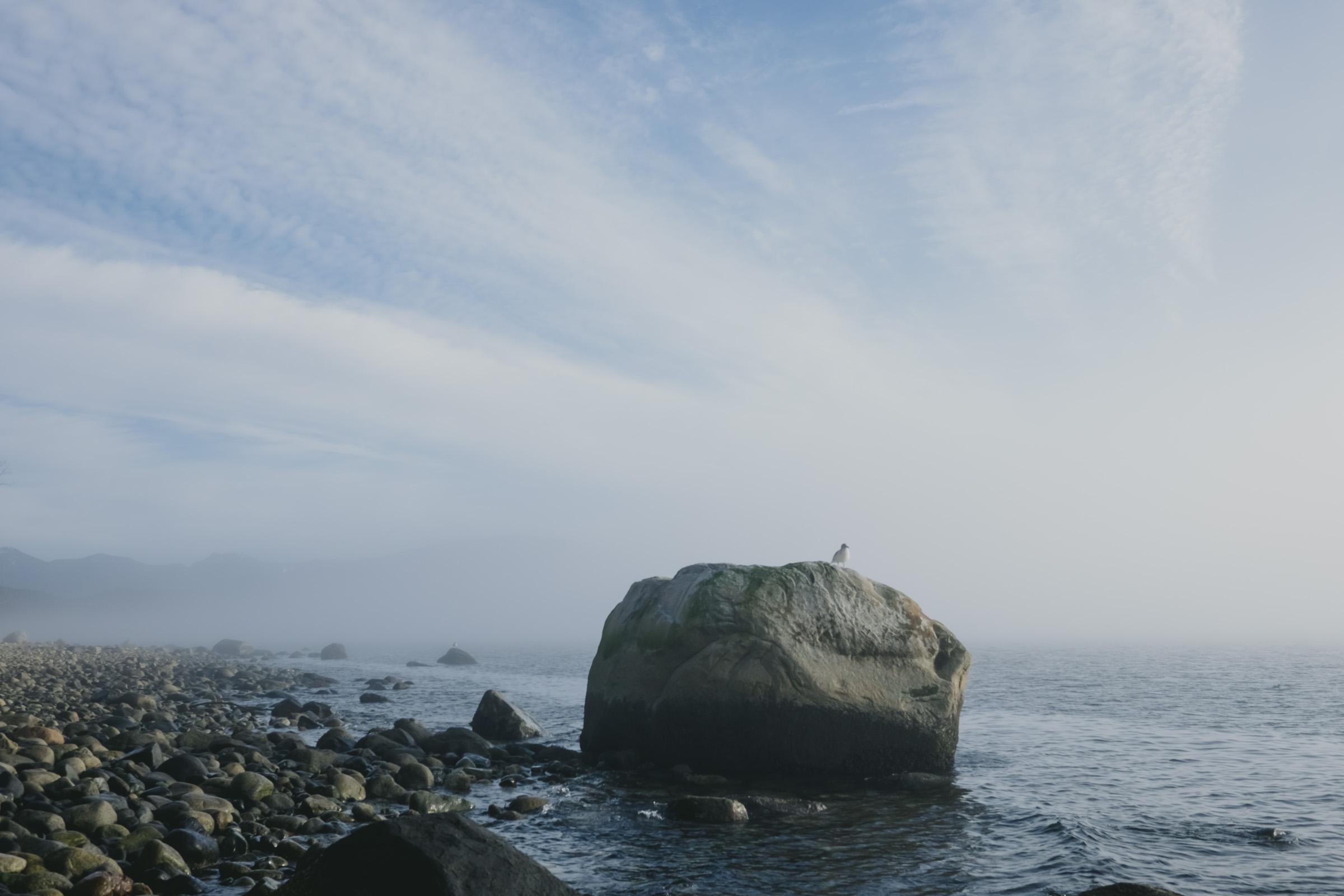 fog rolling through Secret Beach, photo by me.