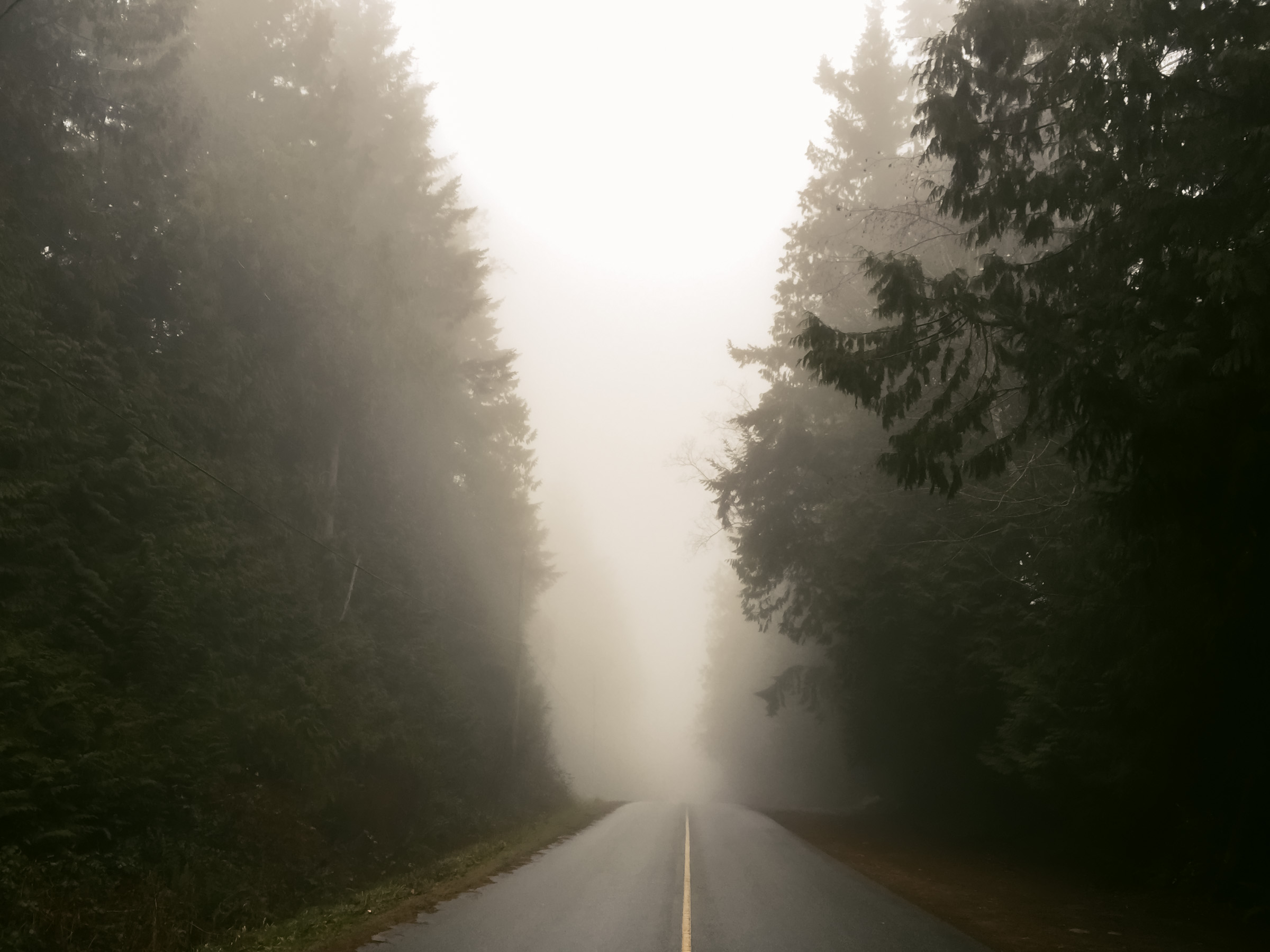 foggy road photo by me.