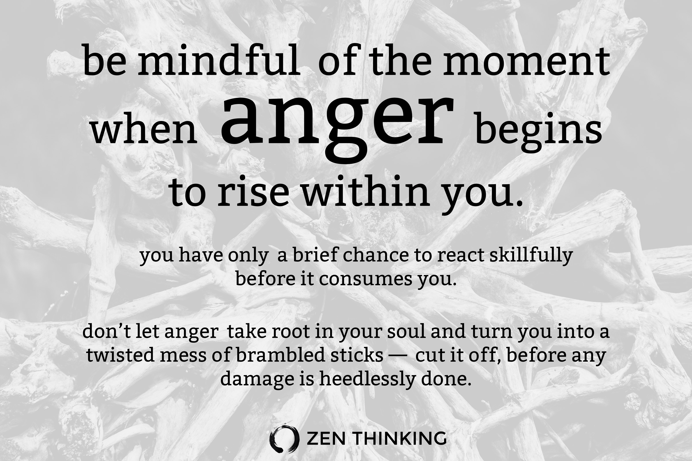 be mindful of the moment when anger begins to rise within you - Zen Thinking