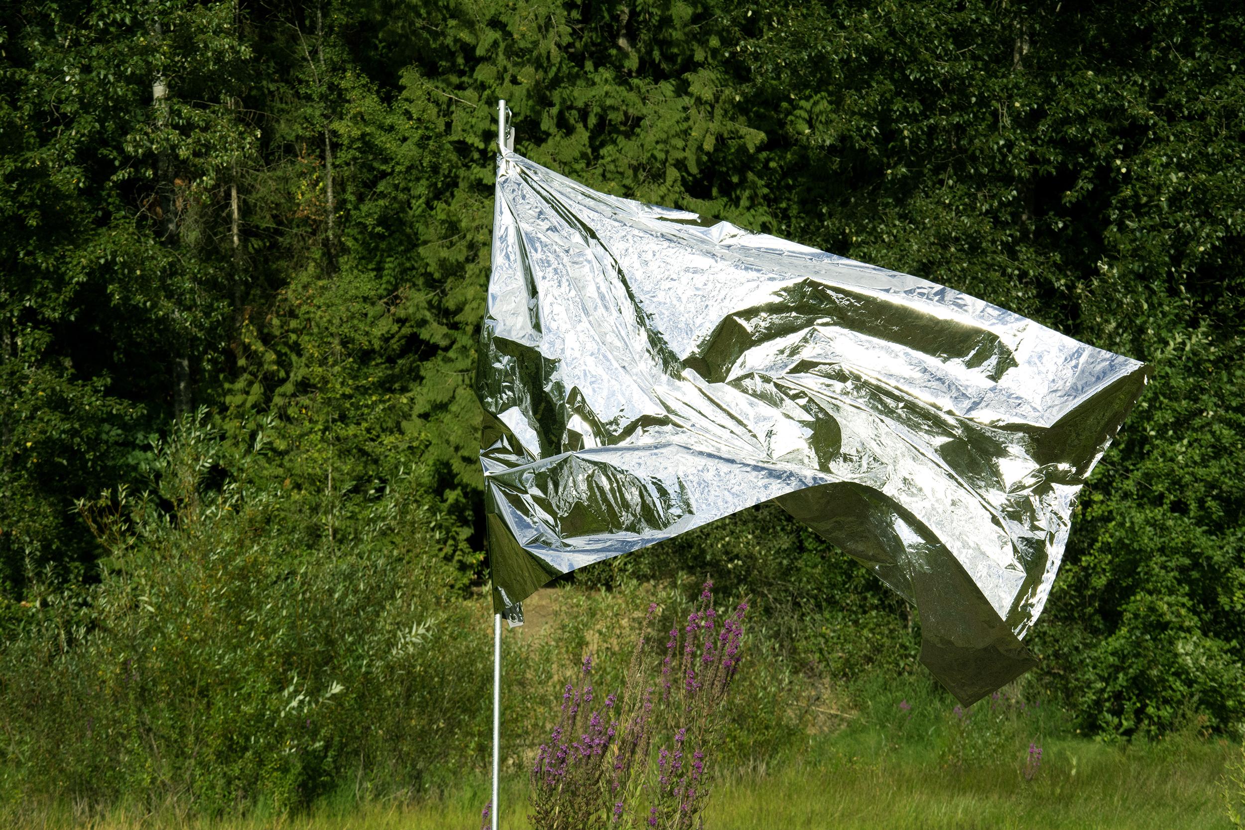180822_MERCURY Flags_Latimer_0097_M.jpg