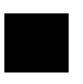 logo_skyrocket.png