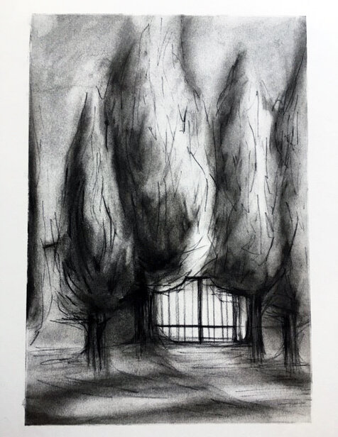 "(sold) ""Front Gate Cypresses"", charcoal on paper, 11""x17"", 2019"