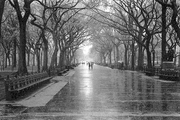 """Rainy Day, Central Park"" by Kate Kerrigan"