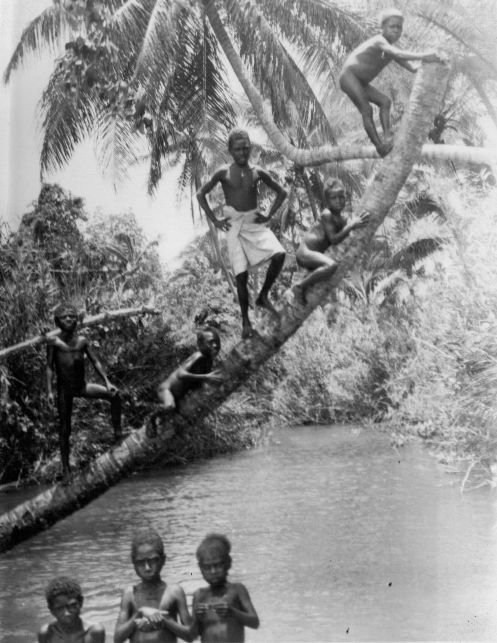 He documented what he saw in the islands as the US advanced. I believe his job was to set up communications on the islands.He was at Guadalcanal, but I'm not sure where he took this.