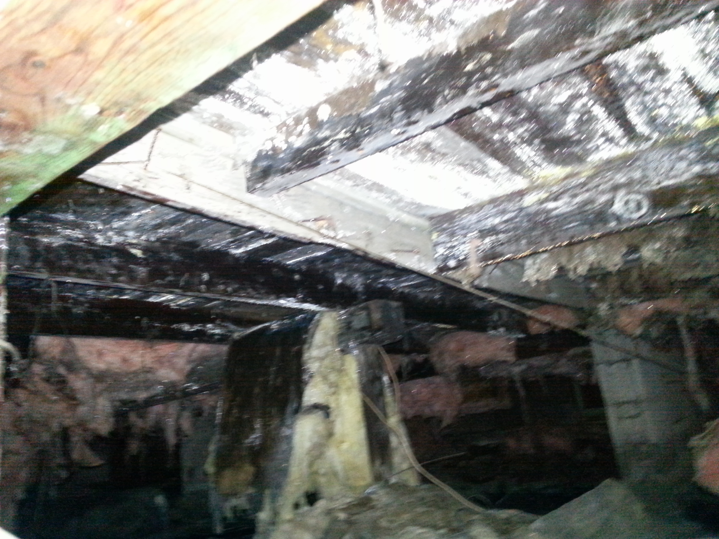Mold Remediation Services by Groundswell Contracting
