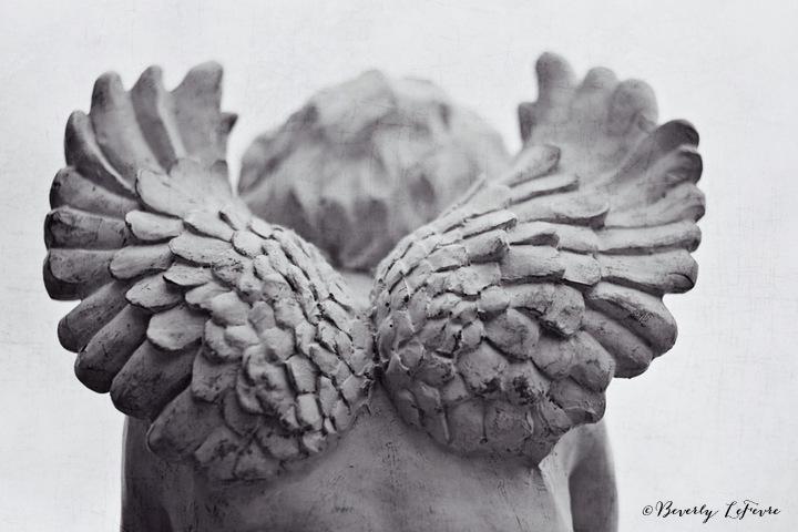 she has wings