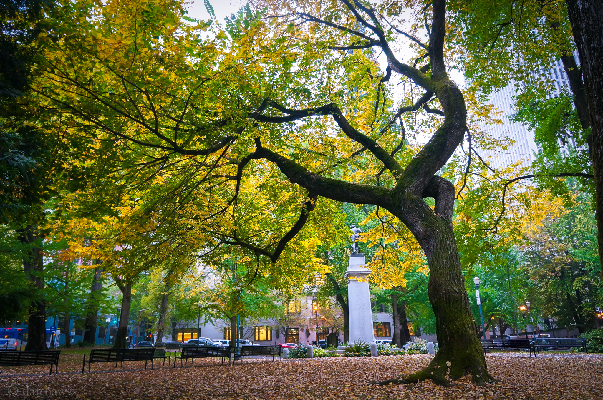 Lownsdale Square | 365 Project | October 11th, 2012