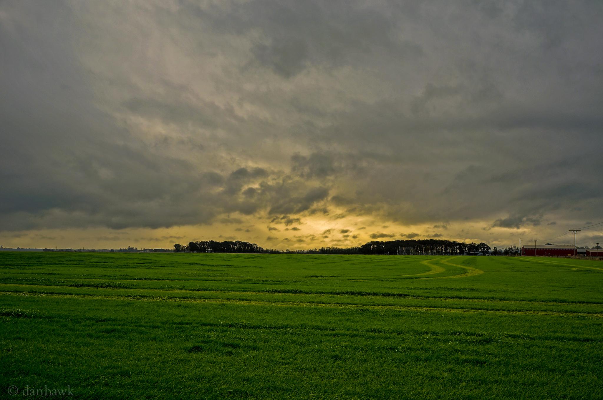 Farming | 365 Project | Nov 12th, 2012